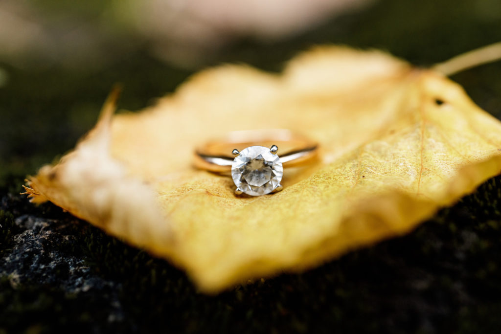 engagement ring photo yellow leave fall