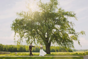 Big Tree Vineland Estates Winery Wedding