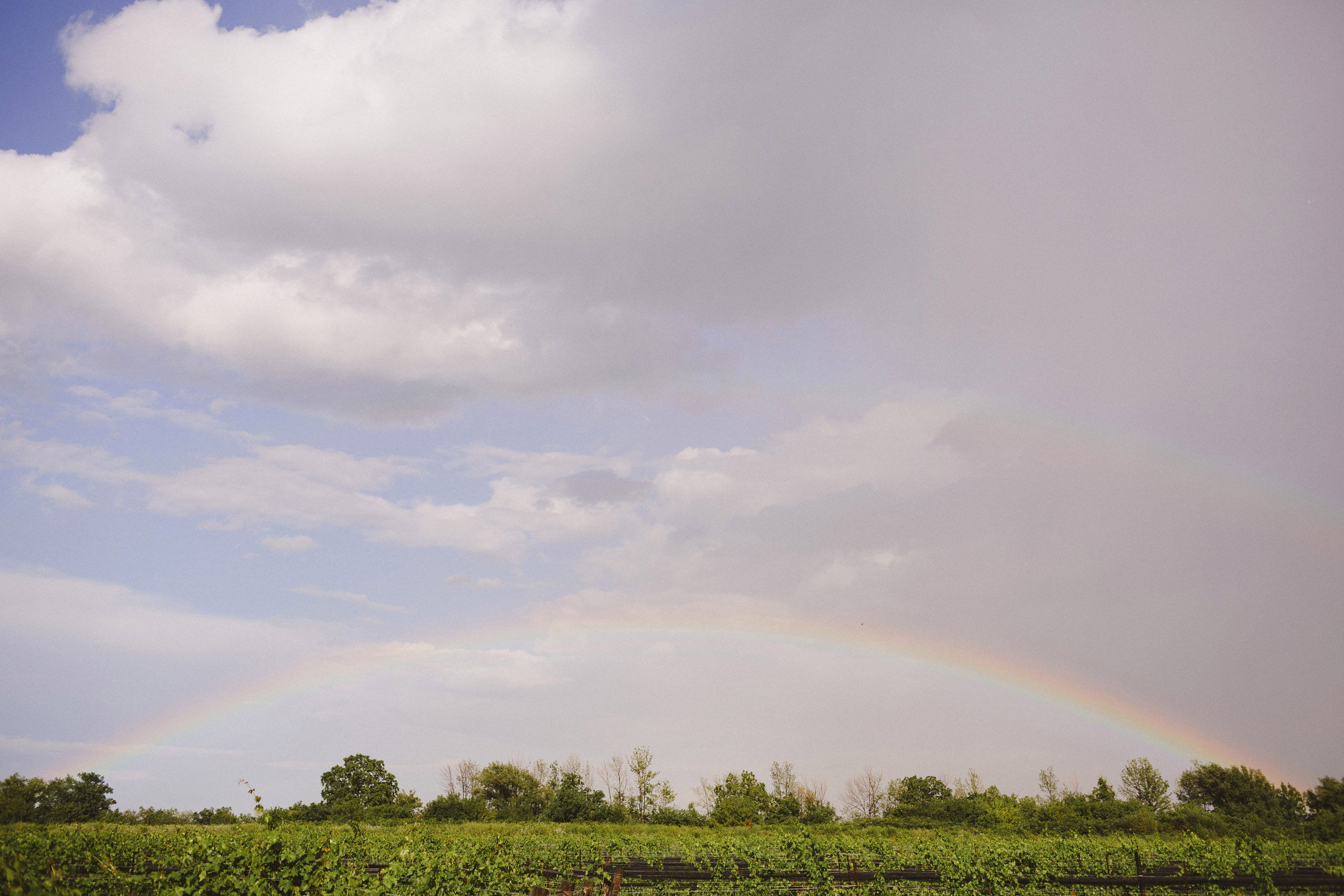winery vineyard rainbow southbrook rain cloud wedding day