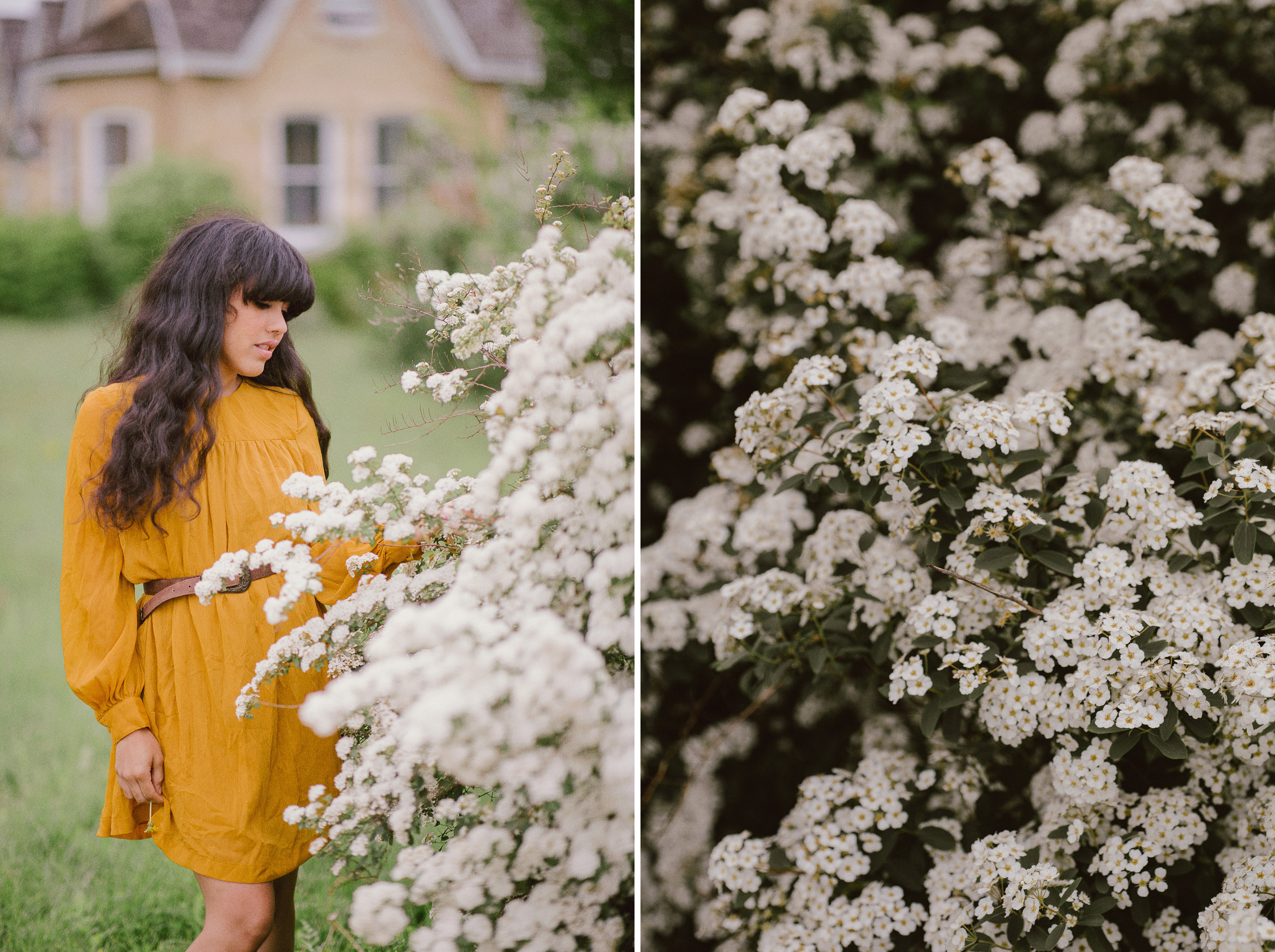 senior portrait girl yellow dress flowers niagara photographer