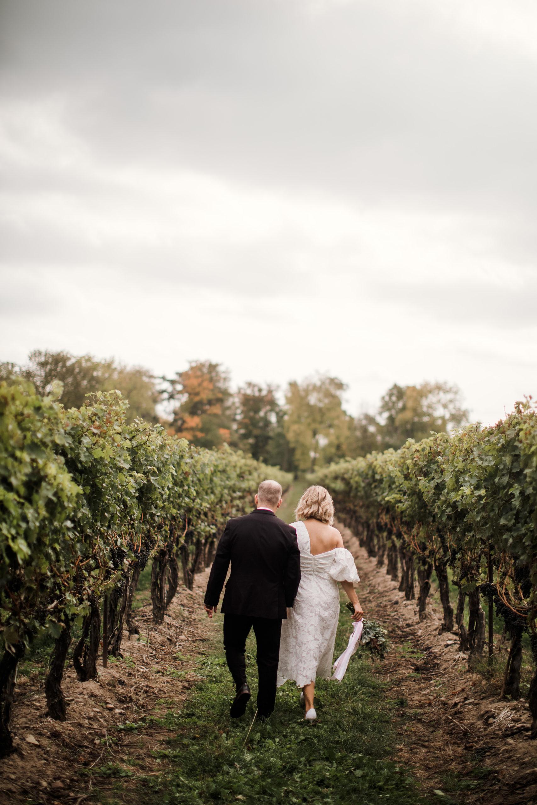 vineyard bride groom niagara on the lake winery fall autumn afterglow photographer