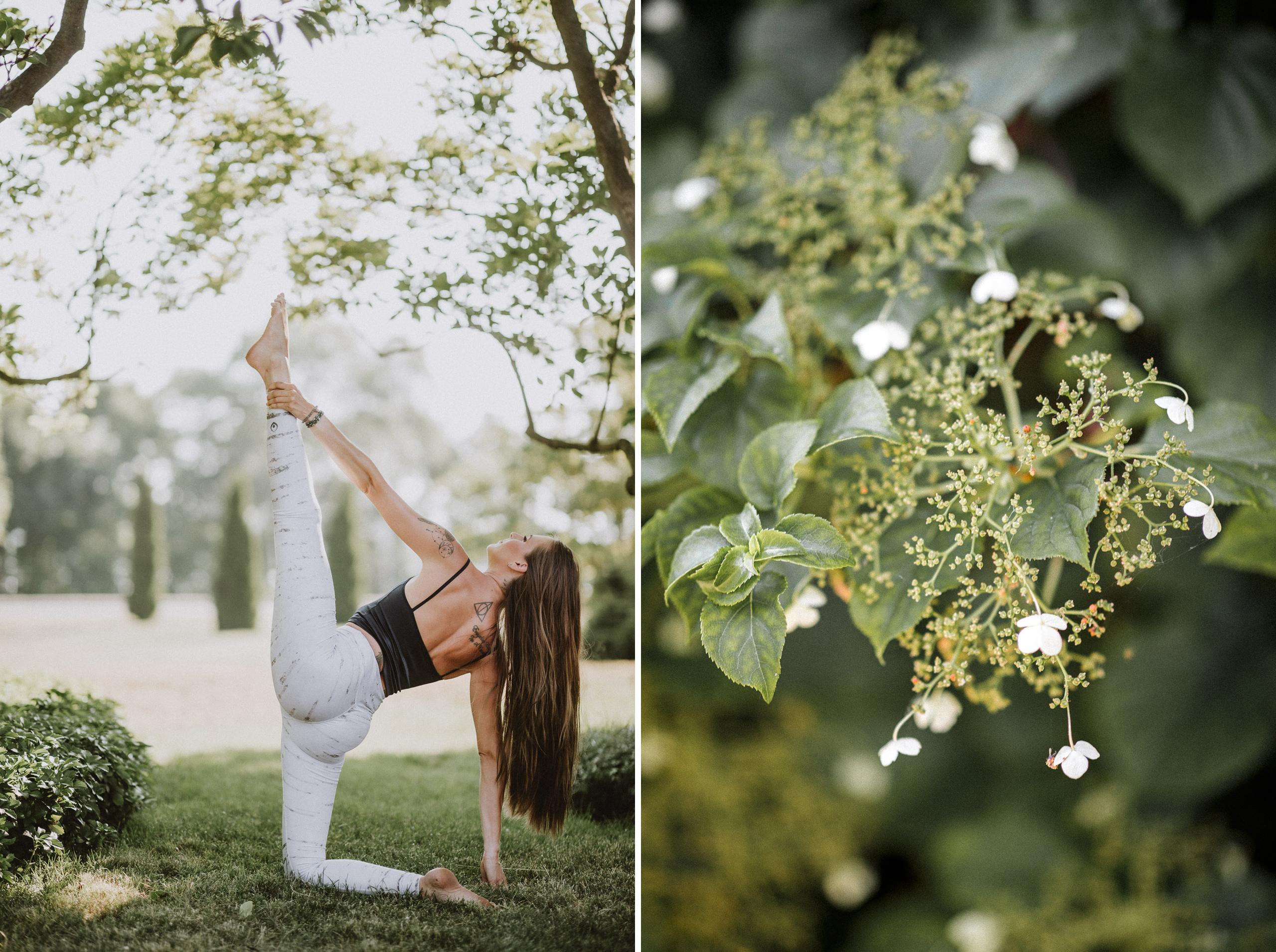 birch tree yoga pants niagara photography
